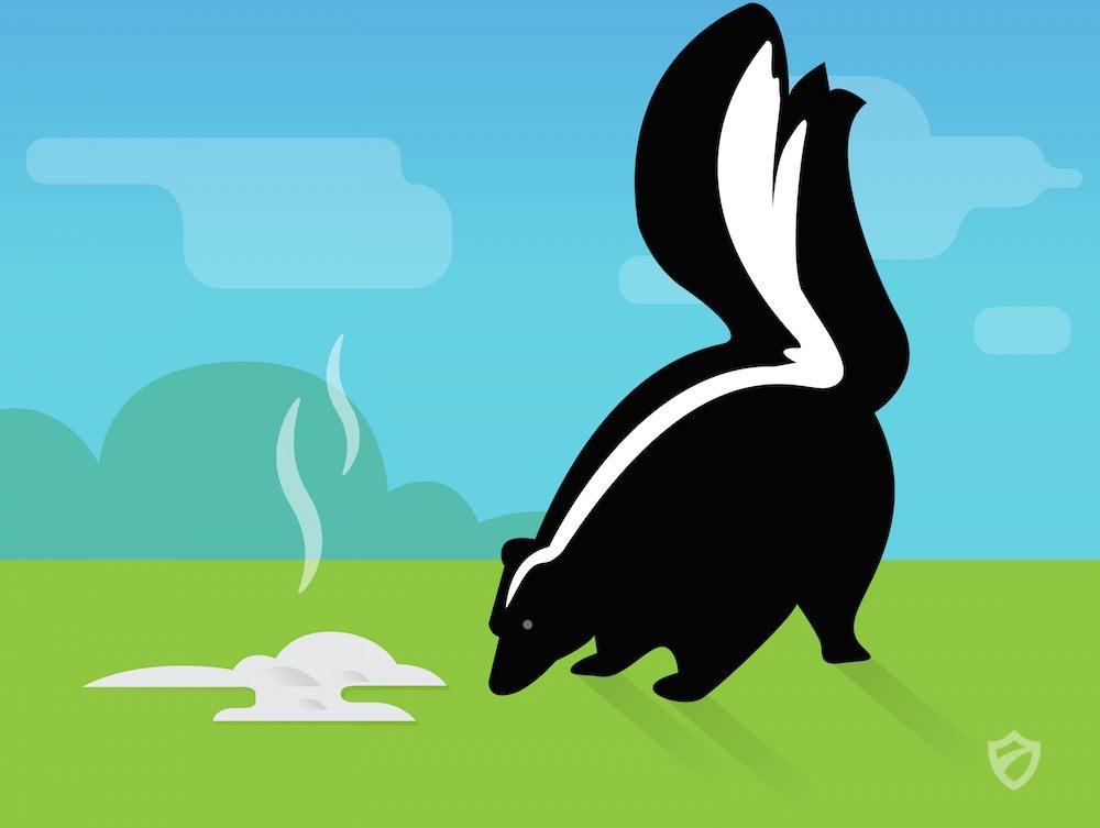 Skunk spraying human clipart clip art black and white Skunk Repellents | Raccoons Repellent Guide clip art black and white