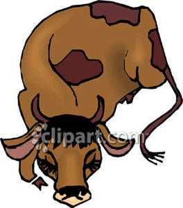 Sleeping brown cow clipart image library sleeping cows - Google Search | passover quilt | Character ... image library