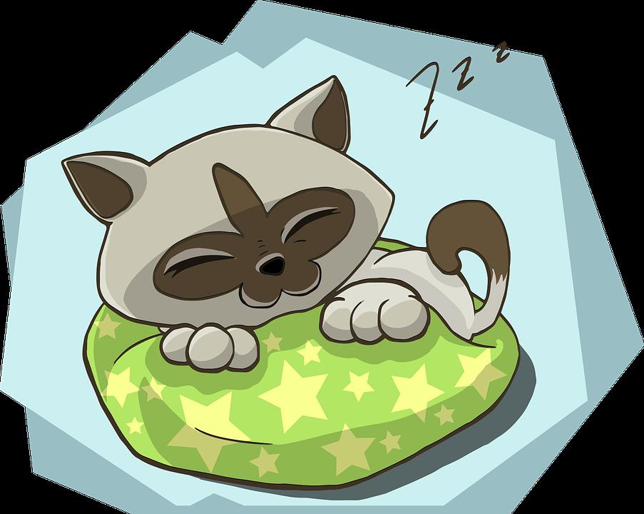 Sleeping cat clipart banner free sleeping #sleep #dream #dreams #wow #wonderful #beautiful #cute #f4f ... banner free