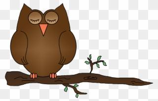 Sleeping owl clipart free image transparent Free PNG Sleeping Owl Clip Art Download - PinClipart image transparent