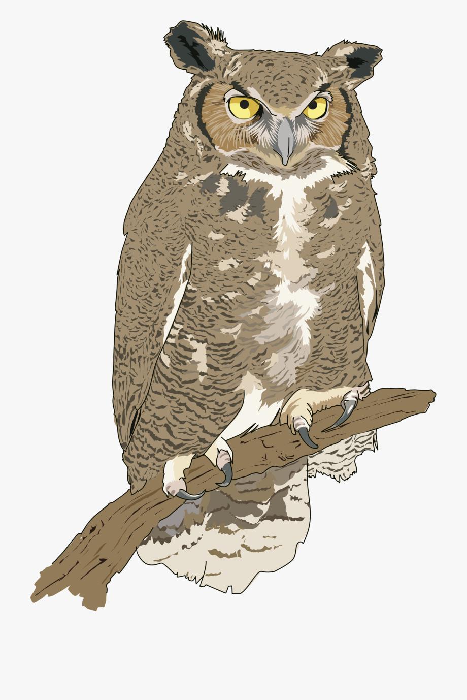 Sleeping owl clipart free svg transparent library Owl Clip Art Png - Eagle Owl Png , Transparent Cartoon, Free ... svg transparent library