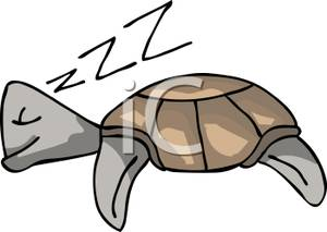 Sleeping turtle clipart picture free library A Sleeping Turtle - Royalty Free Clipart Picture picture free library