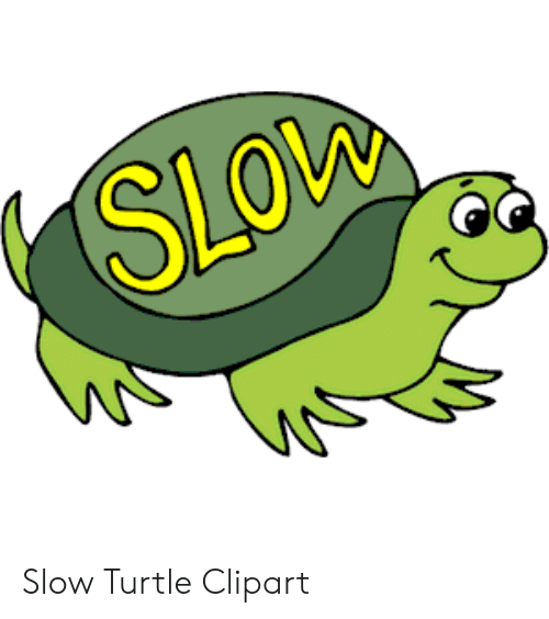 Sleeping turtle clipart clip library library SLOw Slow Turtle Clipart | Turtle Meme on ME.ME clip library library