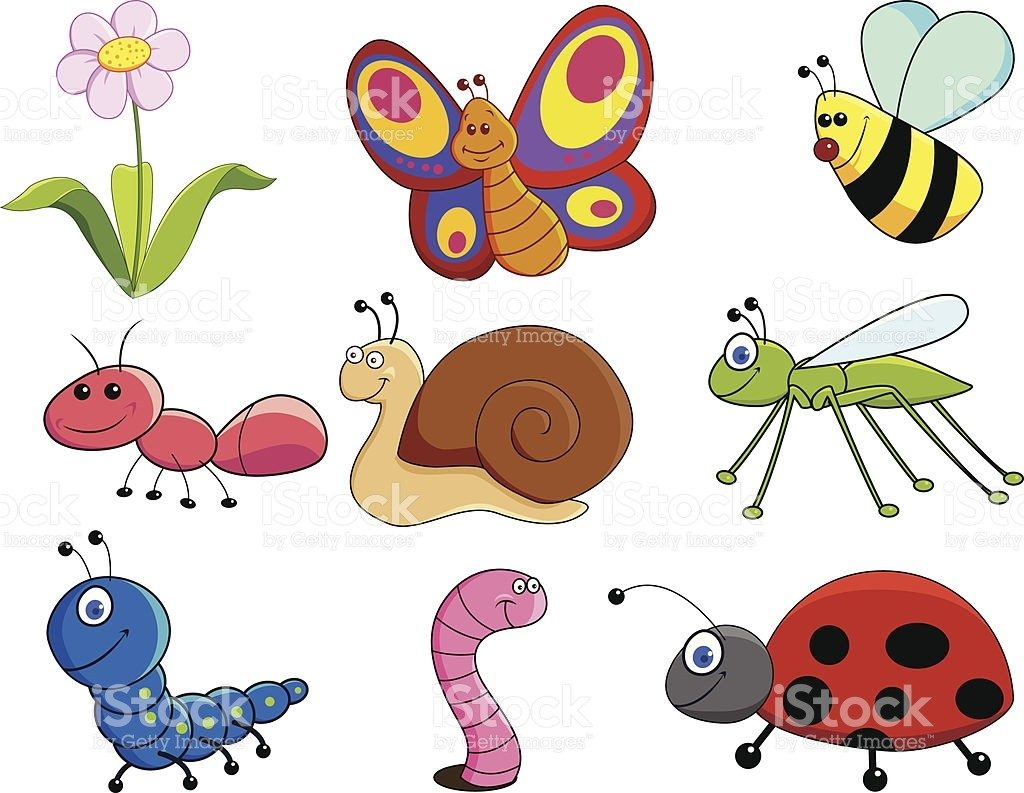 Small animals clipart image free download Small Animals Clipart   Clip Art image free download