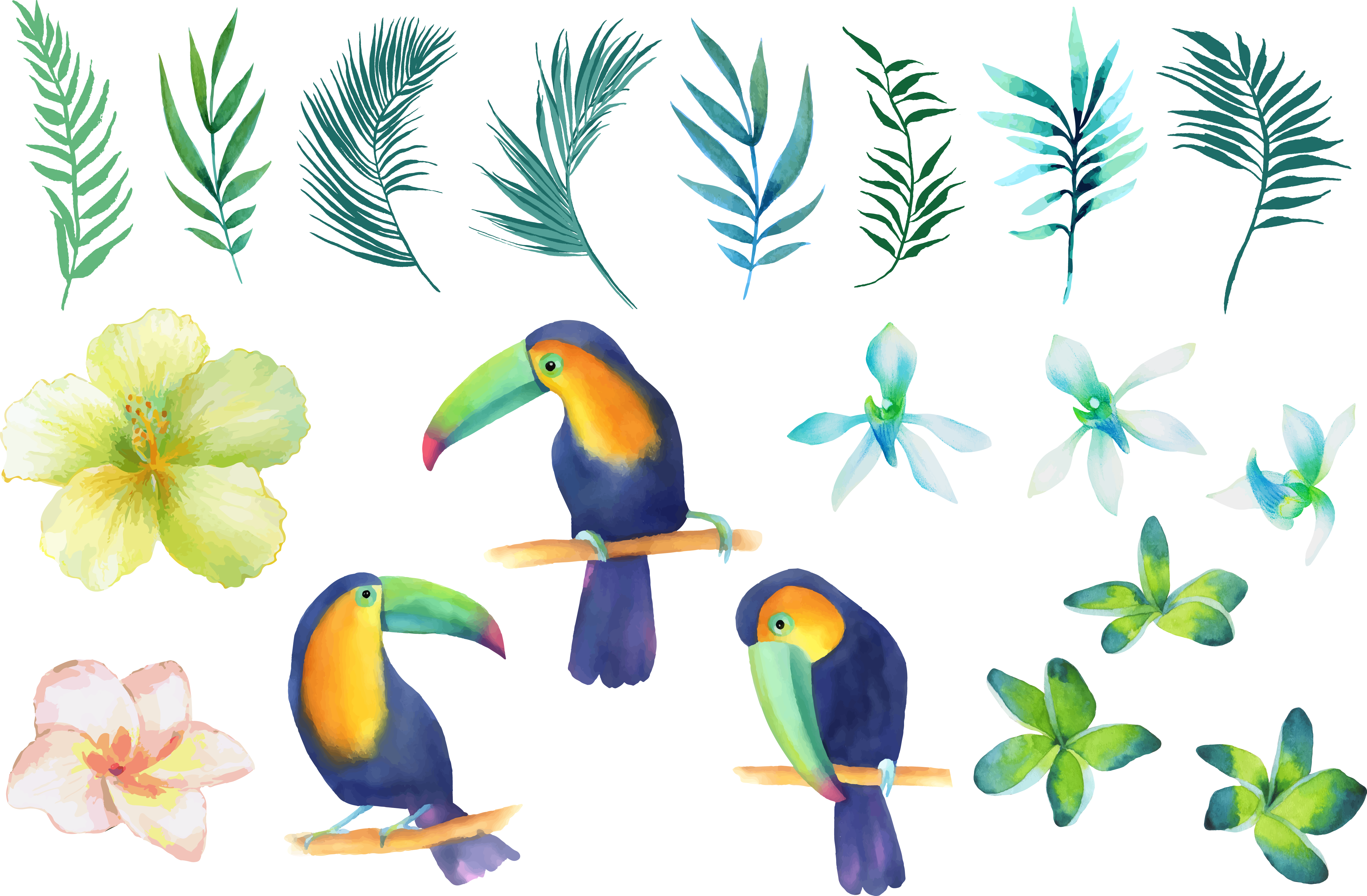 Birds on tree clipart freeuse library Parrot Beak Watercolor painting Clip art - Small fresh hand-painted ... freeuse library