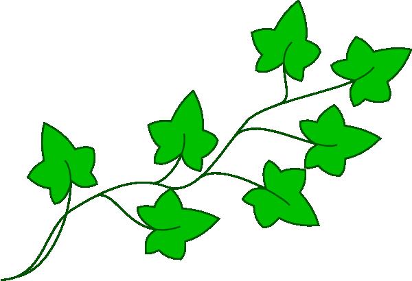Vines animated clipart download Leaf Vine   Free download best Leaf Vine on ClipArtMag.com download