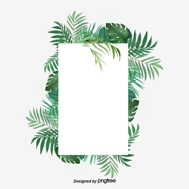 Palm leaf border clipart free library Small Green Fresh Tropical Plant Palm Rectangular Border ... free library