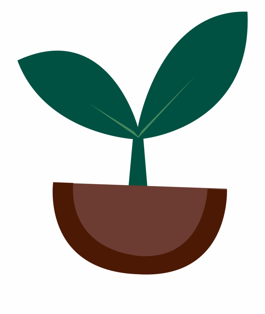 Small seed clipart