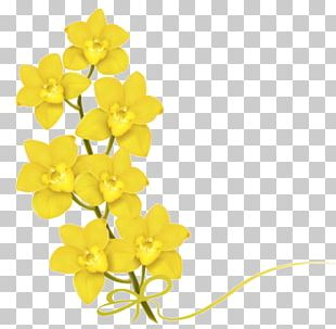 Small yellow flowers clipart clip free download Small Yellow Flower PNG Images, Small Yellow Flower Clipart ... clip free download