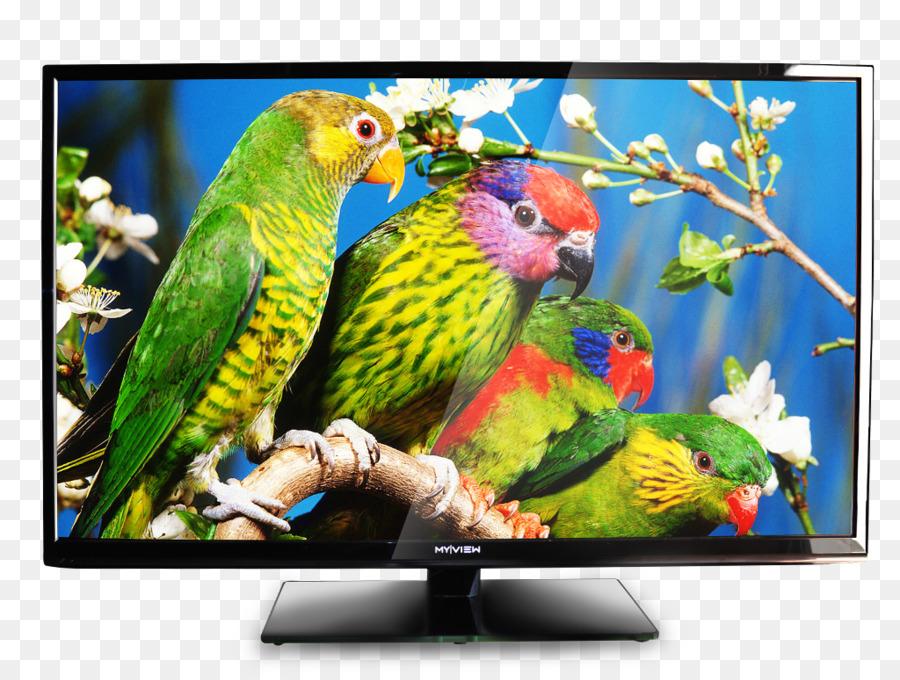Smart tv clipart clip art freeuse Technology Background clipart - Television, Technology ... clip art freeuse
