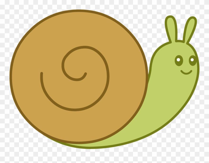Transparent snail clipart