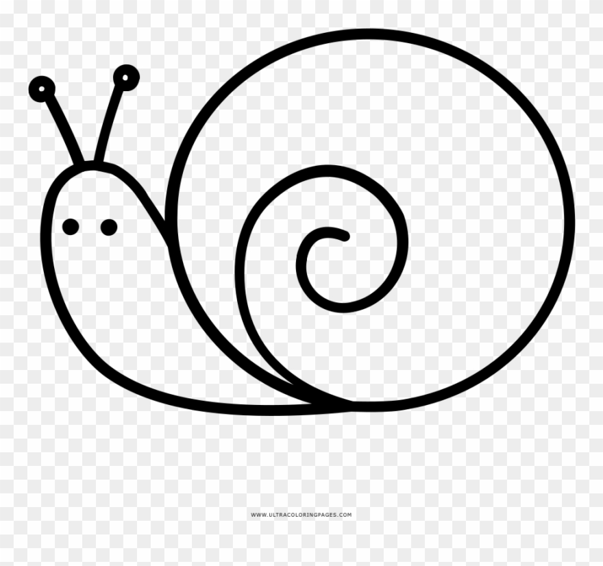 Snail clipart coloring image free download Snail Coloring Page - Snail Clipart (#3416712) - PinClipart image free download