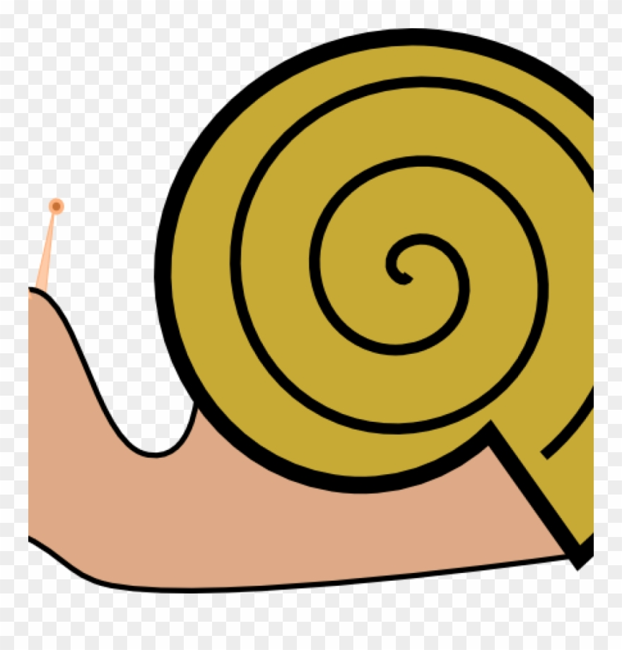 Snail shell clipart svg free stock Snail Clipart Pond Snail - Cartoon Snail Shell - Png ... svg free stock