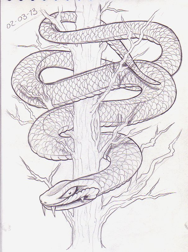 Snake coiled around a branch black and white clipart image transparent Image result for snake on a tree drawing | stuff i need ... image transparent