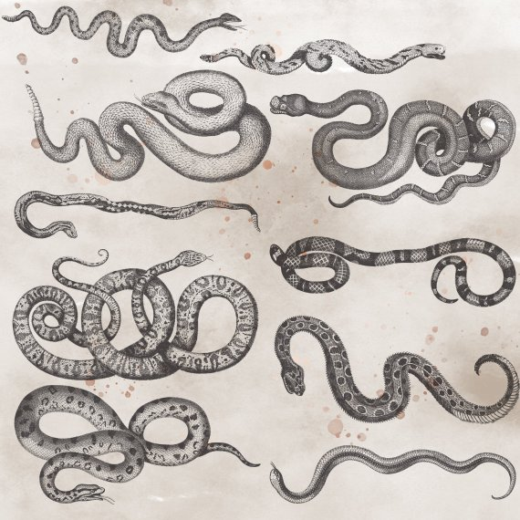 Snake editing clipart clip transparent stock Snakes Clipart Halloween Clipart Serpents Print Illustration ... clip transparent stock