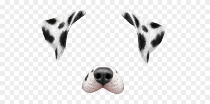 Snapchat filter clipart dog image black and white stock Dalmation Clipart Dogt - Transparent Snapchat Dog Filter ... image black and white stock