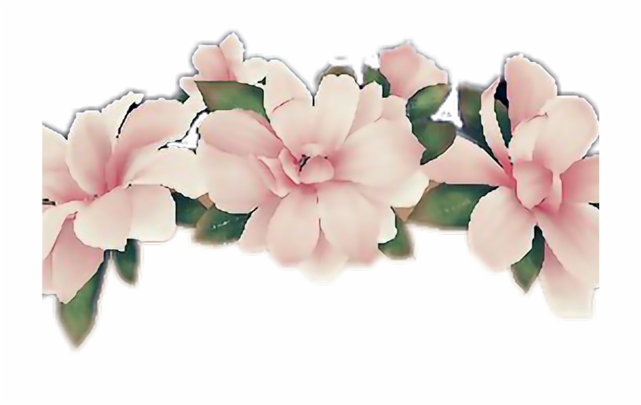 Snapchat flower filter clipart clipart royalty free Flower Flowercrown Snapchatfilter Snapchat Girl Pink ... clipart royalty free