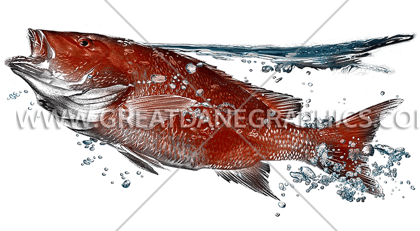 Snapper fish clipart jpg free Red Snapper Surfacing | Production Ready Artwork for T-Shirt Printing jpg free