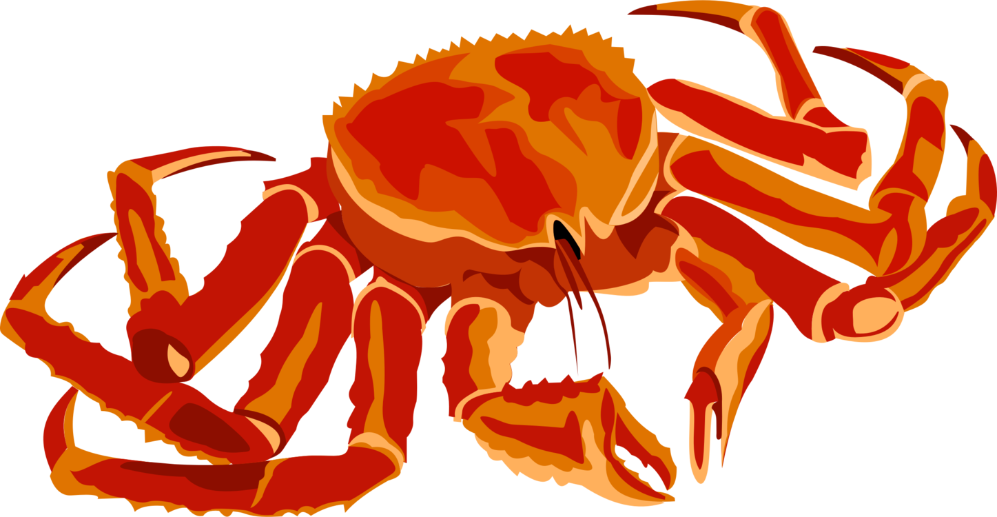 Snow crab clipart picture royalty free download Decapoda,Art,Crustacean Vector Clipart - Free to modify ... picture royalty free download
