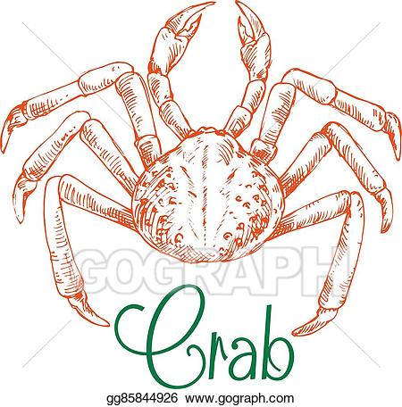 Snow crab clipart clip art black and white stock Vector Art - Sketch of large japanese snow crab. Clipart ... clip art black and white stock