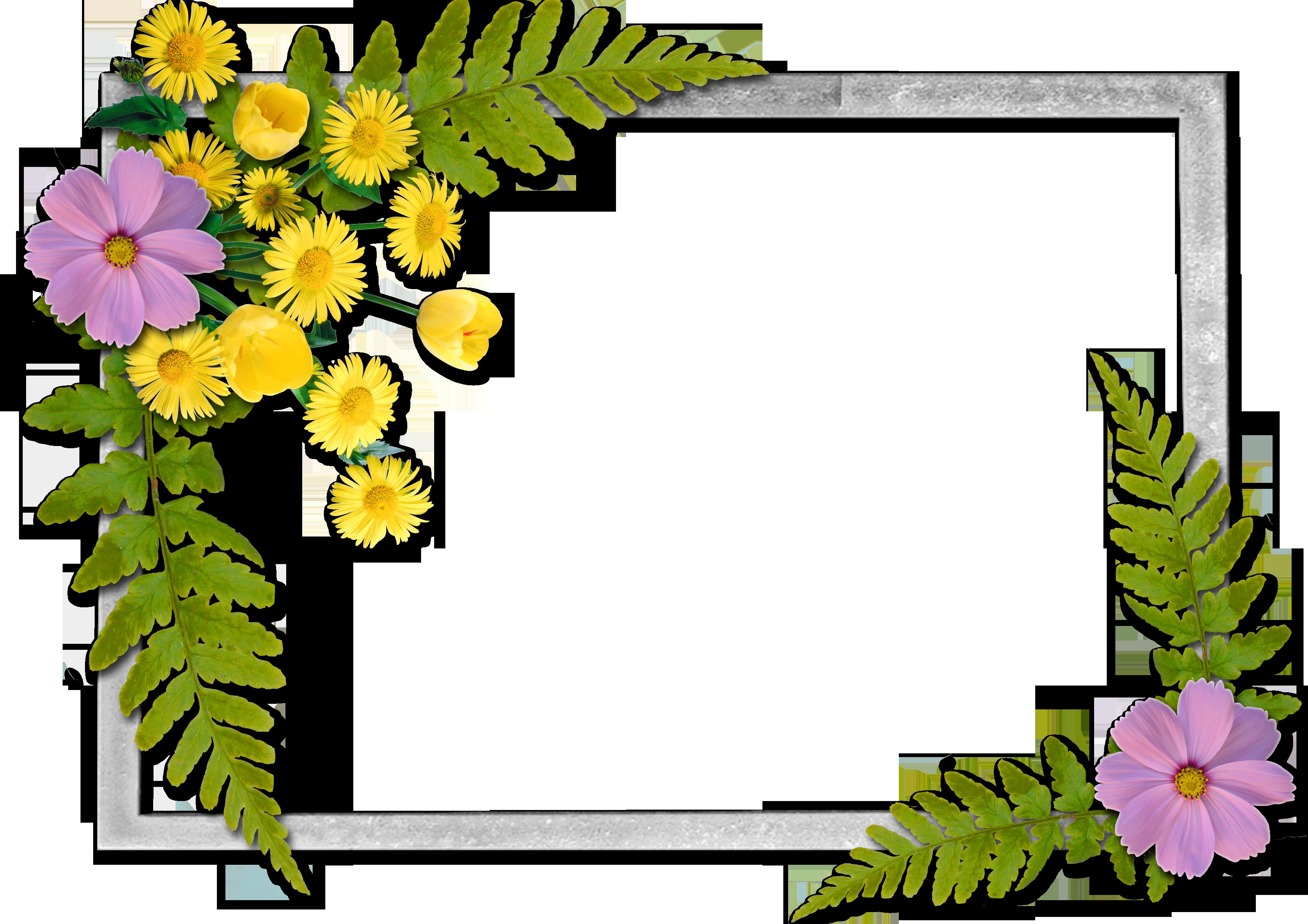 Snowflake clipart divider music freeuse stock Flowers frame (15)   An Pinterest   Pinterest   Flowers, Flower ... freeuse stock