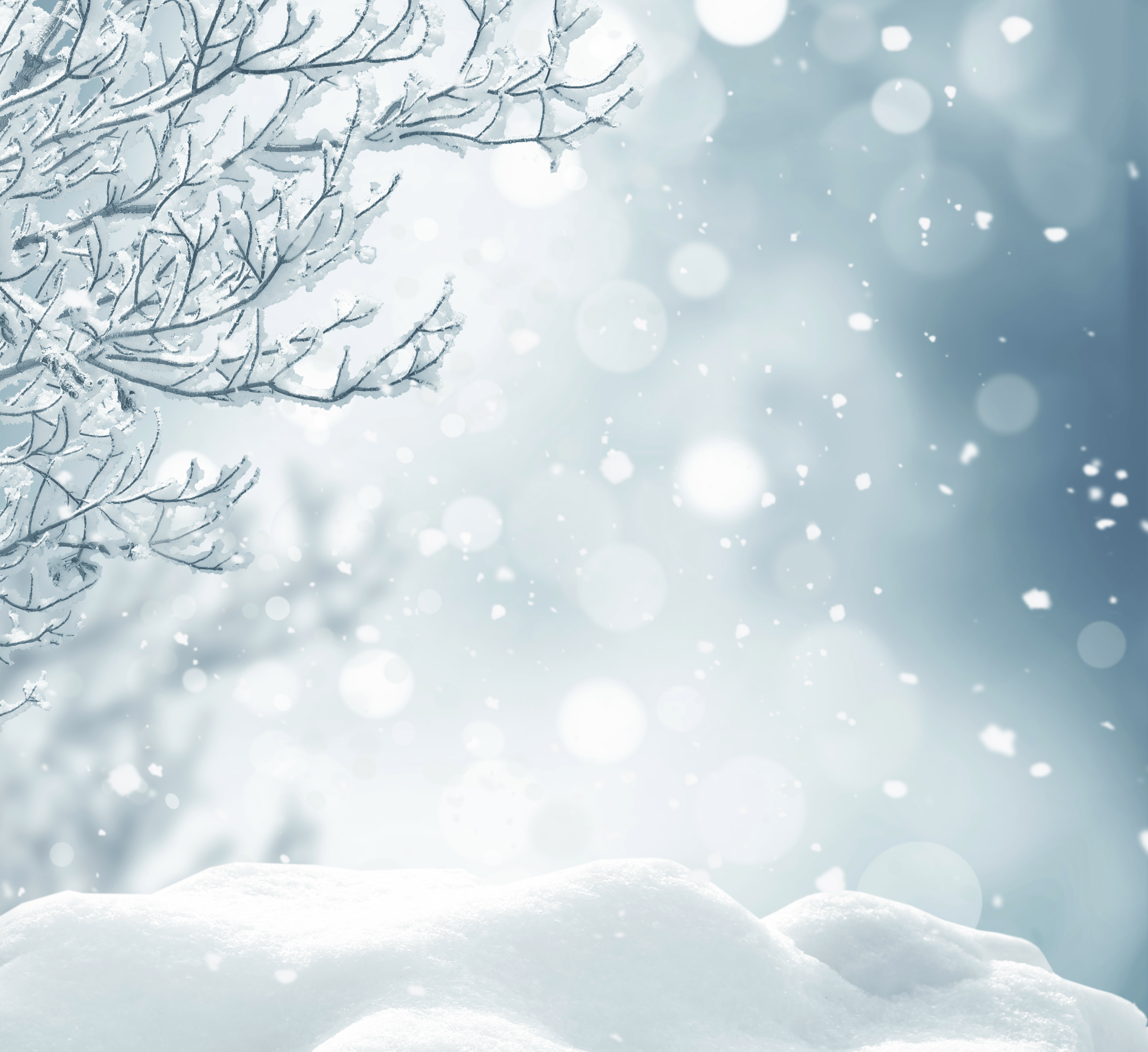 Snowy background clipart banner transparent library Snowy Background with Branches | Gallery Yopriceville ... banner transparent library
