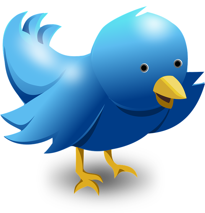 Twitter clipart bird banner royalty free download Social, Media - Free images on Pixabay banner royalty free download