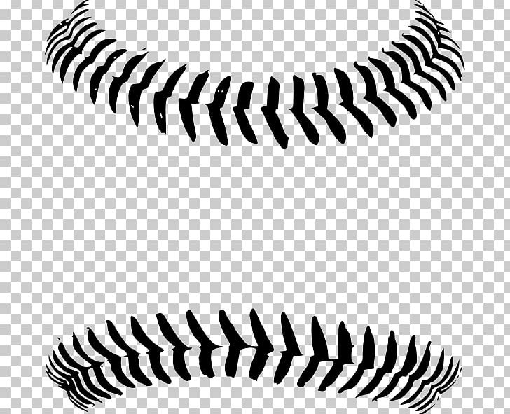 Softball seams clipart clip royalty free stock Baseball Stitch Seam PNG, Clipart, Angle, Autocad Dxf ... clip royalty free stock