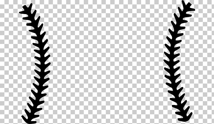Softball stitches vector clipart clip freeuse Baseball Stitch Seam Scalable Graphics , Stitches s PNG ... clip freeuse