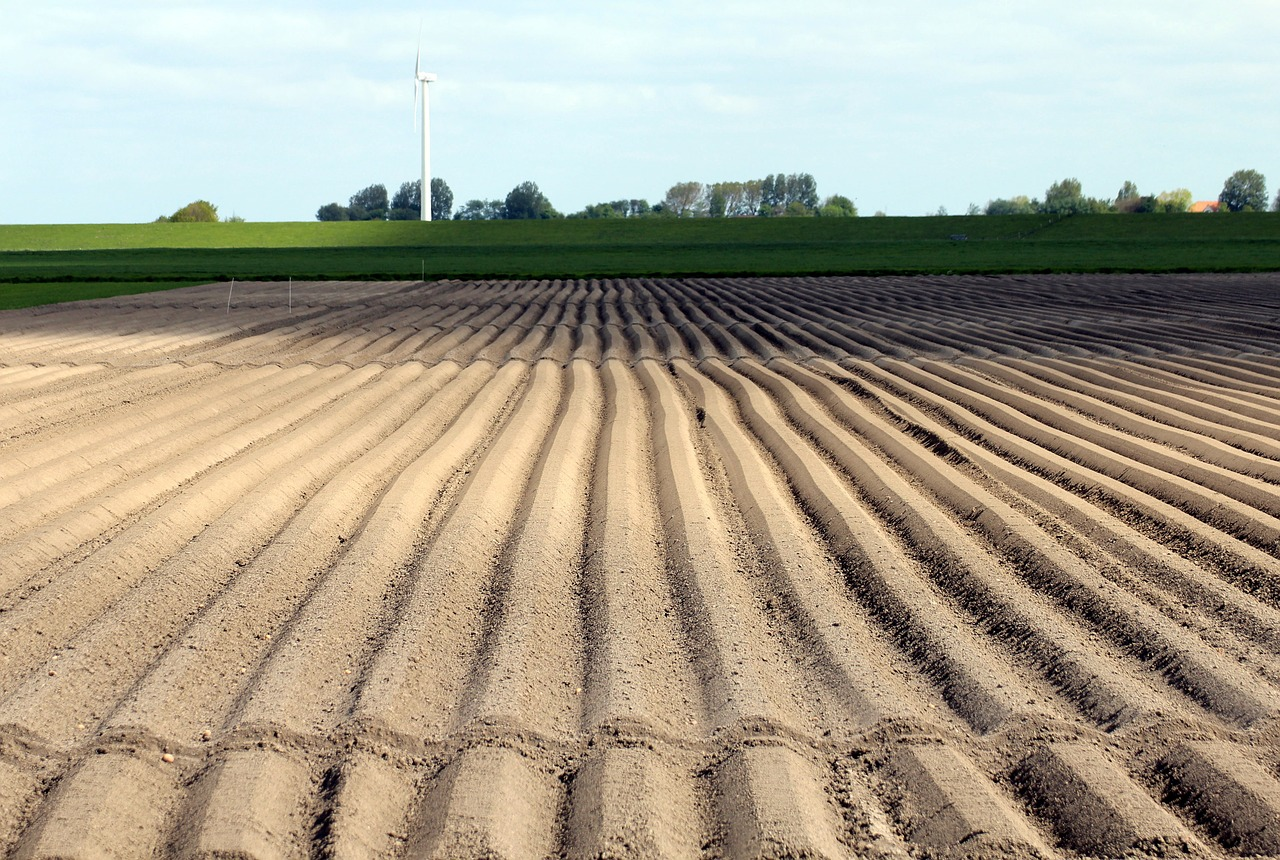 Soil furrows clipart svg Potato cultivation,arable,cultivation,symmetry,series - free ... svg