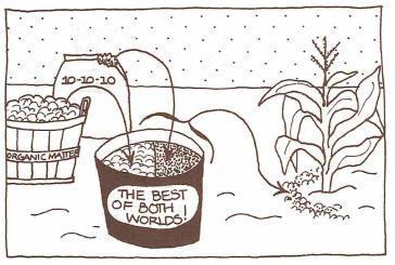 Soil furrows clipart clip stock Corn: Planting Basics - Garden.org clip stock