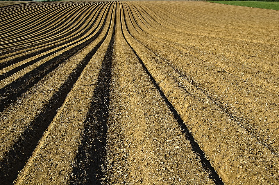 Soil furrows clipart image library stock Free photo Crop Prepared Furrows Seeds Preparation Soil ... image library stock