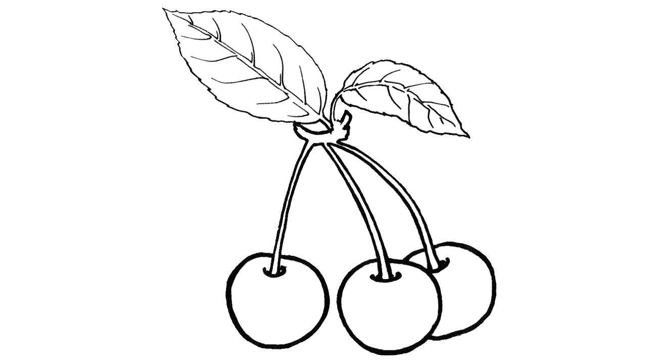 Solid apple clipart black and white transparent library Mangosteen Clipart Black And White. Great Mangosteen Fruits Drawn By ... transparent library
