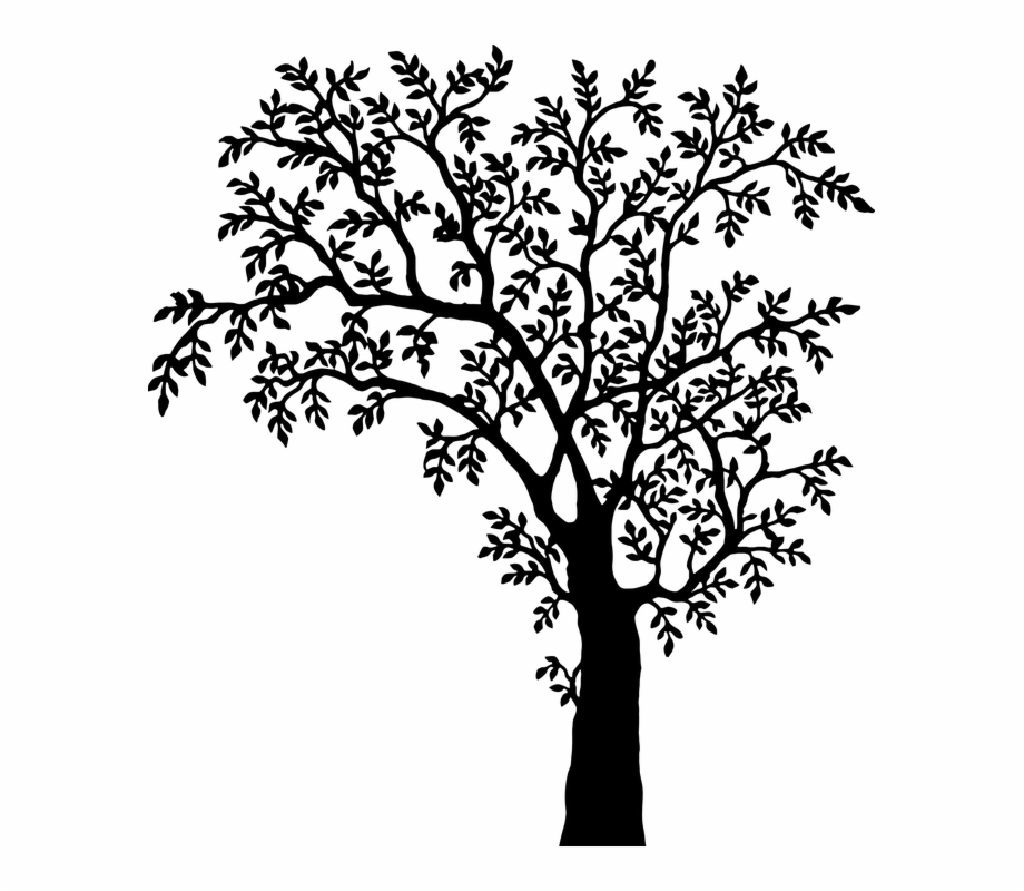 Someone looking over wall vector clipart black and white graphic freeuse stock Free Vector Graphic - Tree Png Clipart Black And White - oak ... graphic freeuse stock