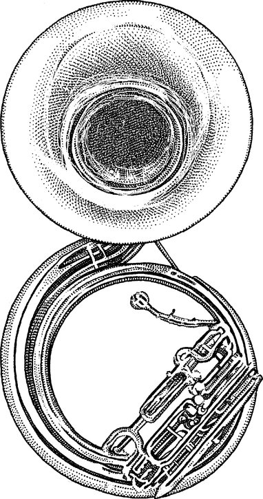 Sousaphone clipart banner transparent Sousaphone Drawing at PaintingValley.com | Explore ... banner transparent