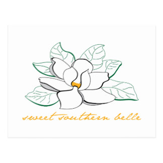 Southern belle hat silhouette clipart clip free library Southern Belle Gifts on Zazzle clip free library
