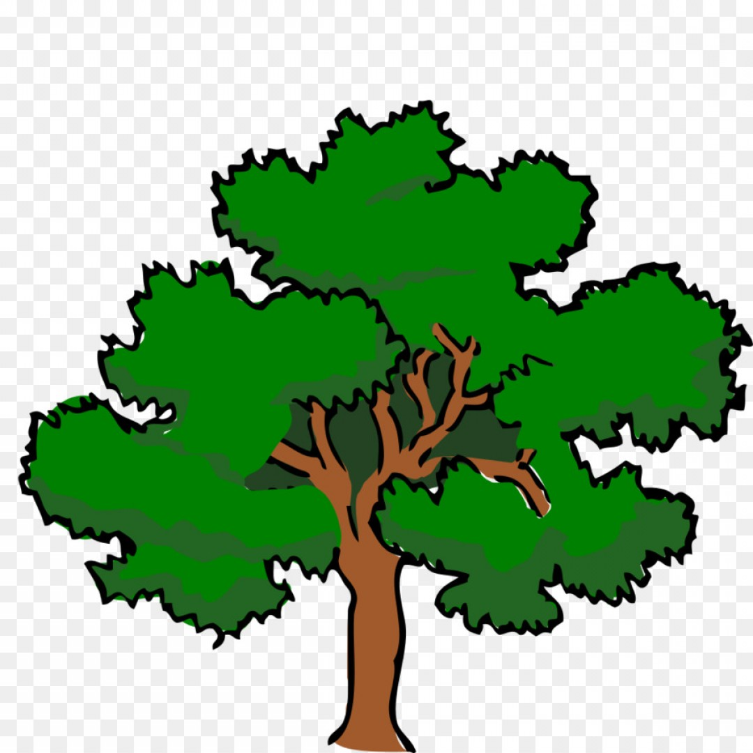 Southern live oak clipart clip library library Png Clip Art Vector Graphics Southern Live Oak Portabl ... clip library library