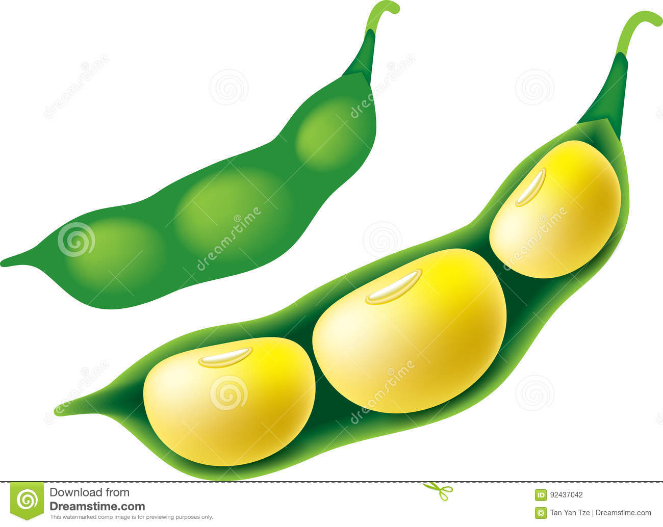 Soybean clipart vector royalty free library Soybean clipart 4 » Clipart Station vector royalty free library
