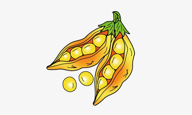 Soybean clipart jpg freeuse download Soybean clipart 6 » Clipart Station jpg freeuse download