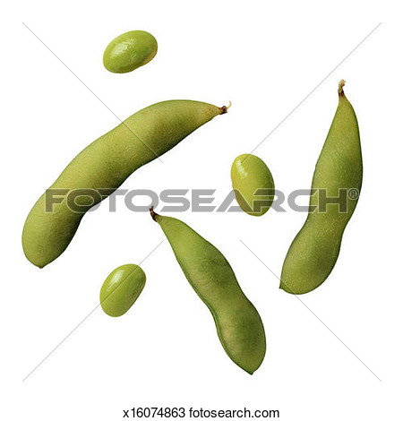 Soybeans clipart svg free 10+ Soybean Clipart | ClipartLook svg free