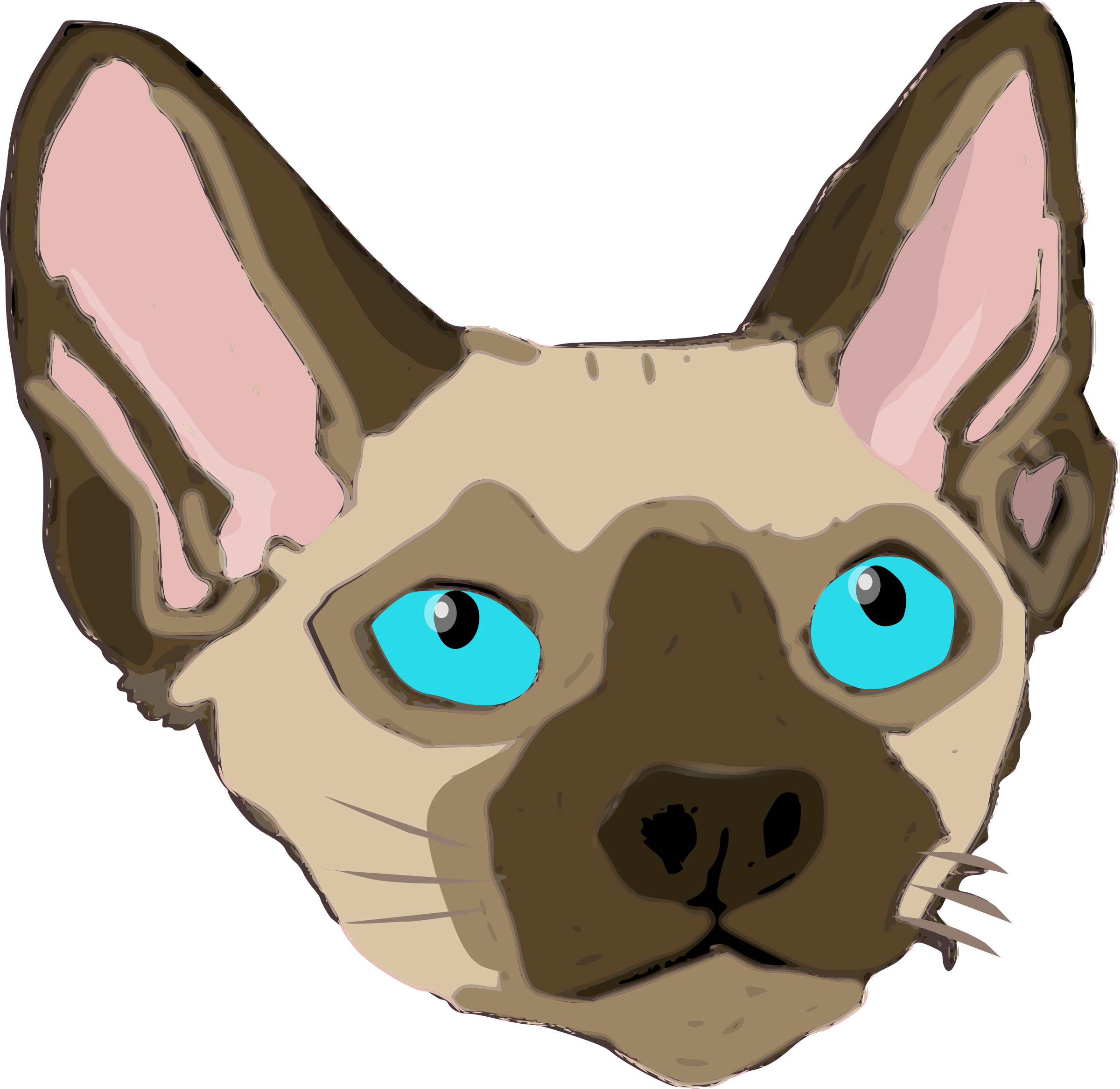 Sphynx cat clipart clip freeuse Clipart - Devon Rex 1 clip freeuse