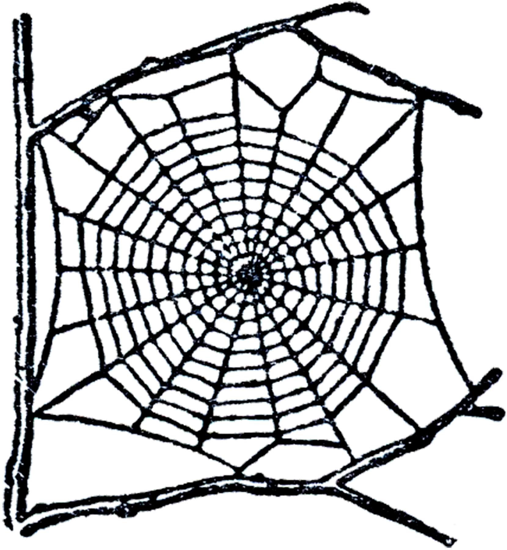 Spider web overlay clipart clipart freeuse Spiderweb Borders | Free download best Spiderweb Borders on ... clipart freeuse