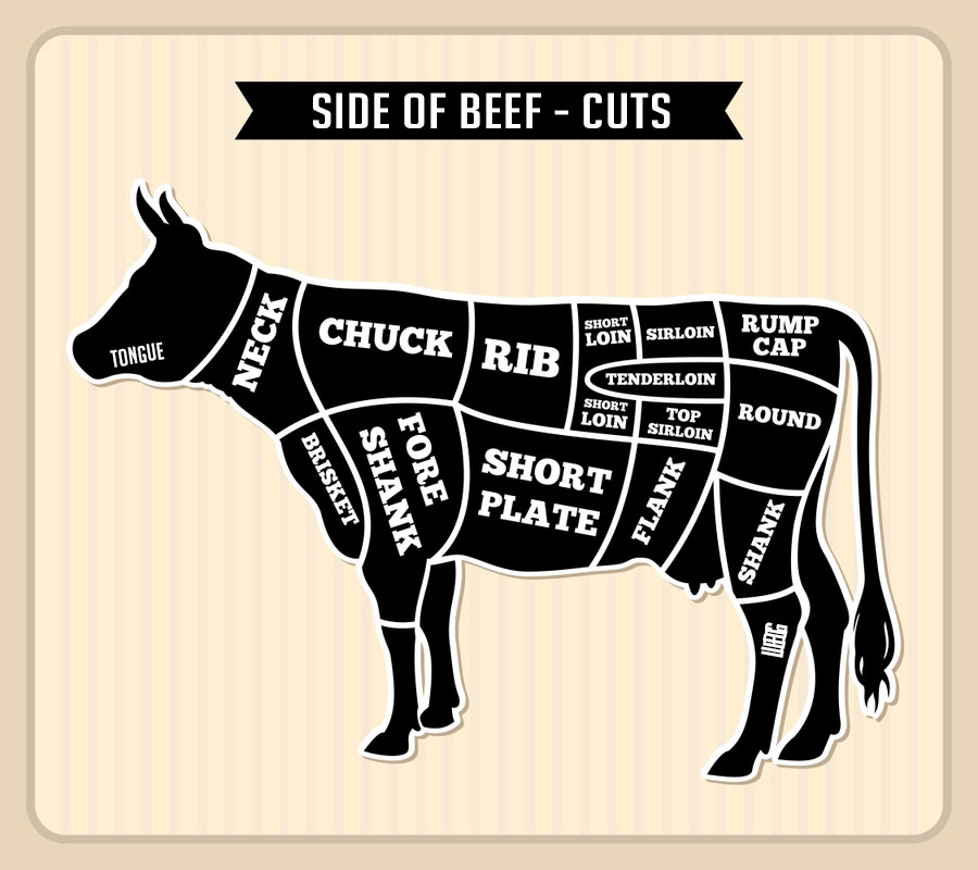 Split side of beef clipart clip art royalty free download Side of Beef: The Complete Buyer\'s Guide - Janes Kitchen ... clip art royalty free download