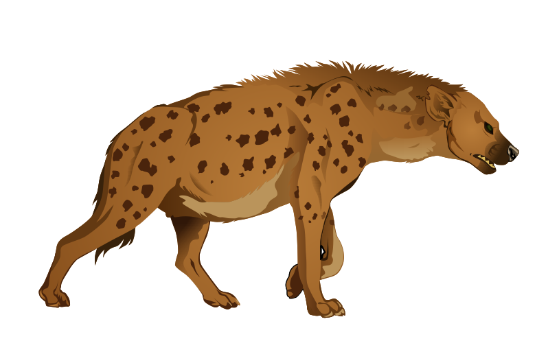 Spotted cat clipart graphic freeuse stock Spotted hyena Clip art - Hyena PNG 814*529 transprent Png Free ... graphic freeuse stock