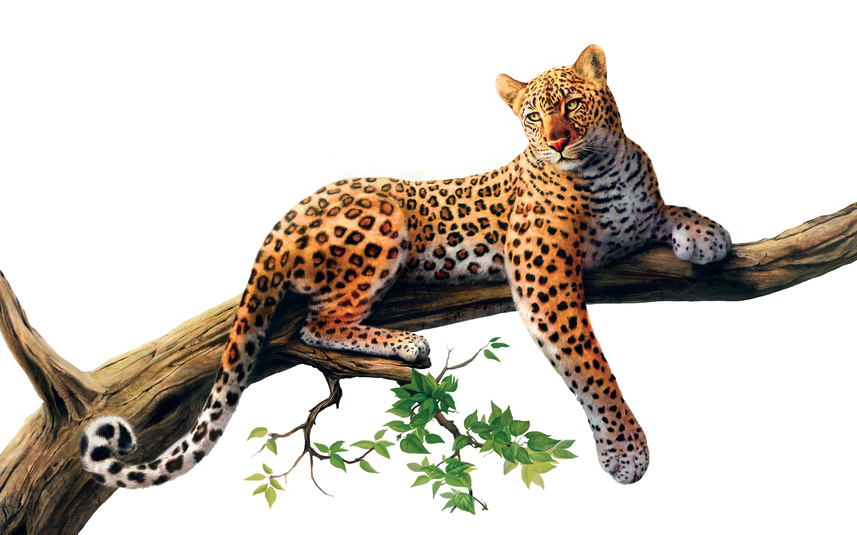 Spotted cat clipart svg transparent library Jaguar PNG images free download svg transparent library