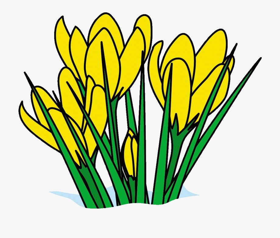 Spring beak clipart free image freeuse Spring Clip Art Pg 1 Disney Spring Break Clip Art Free ... image freeuse
