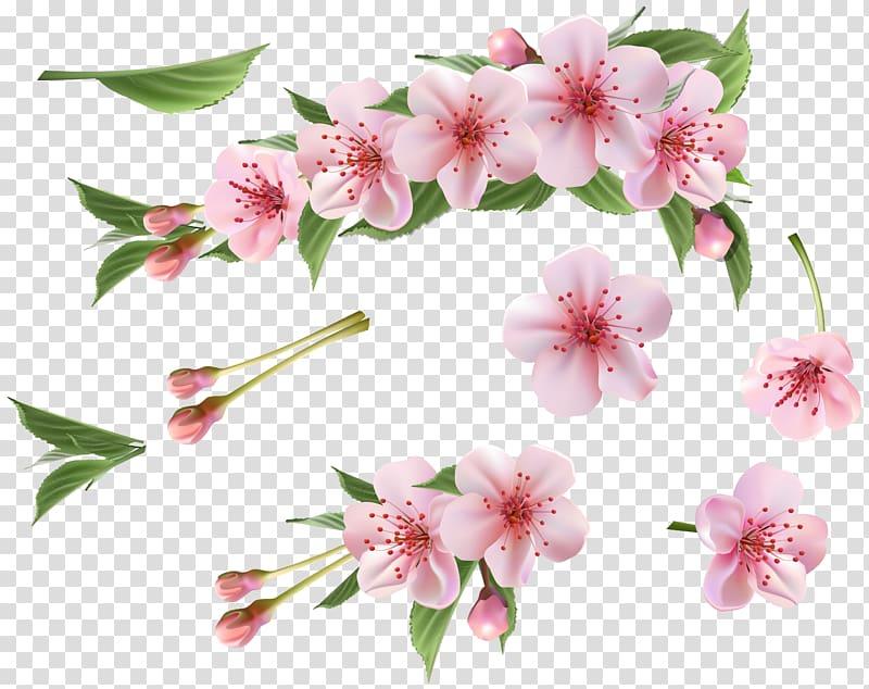 Spring branch clipart clip transparent stock Branch , Spring Branch Pink Elements , pink floral ... clip transparent stock