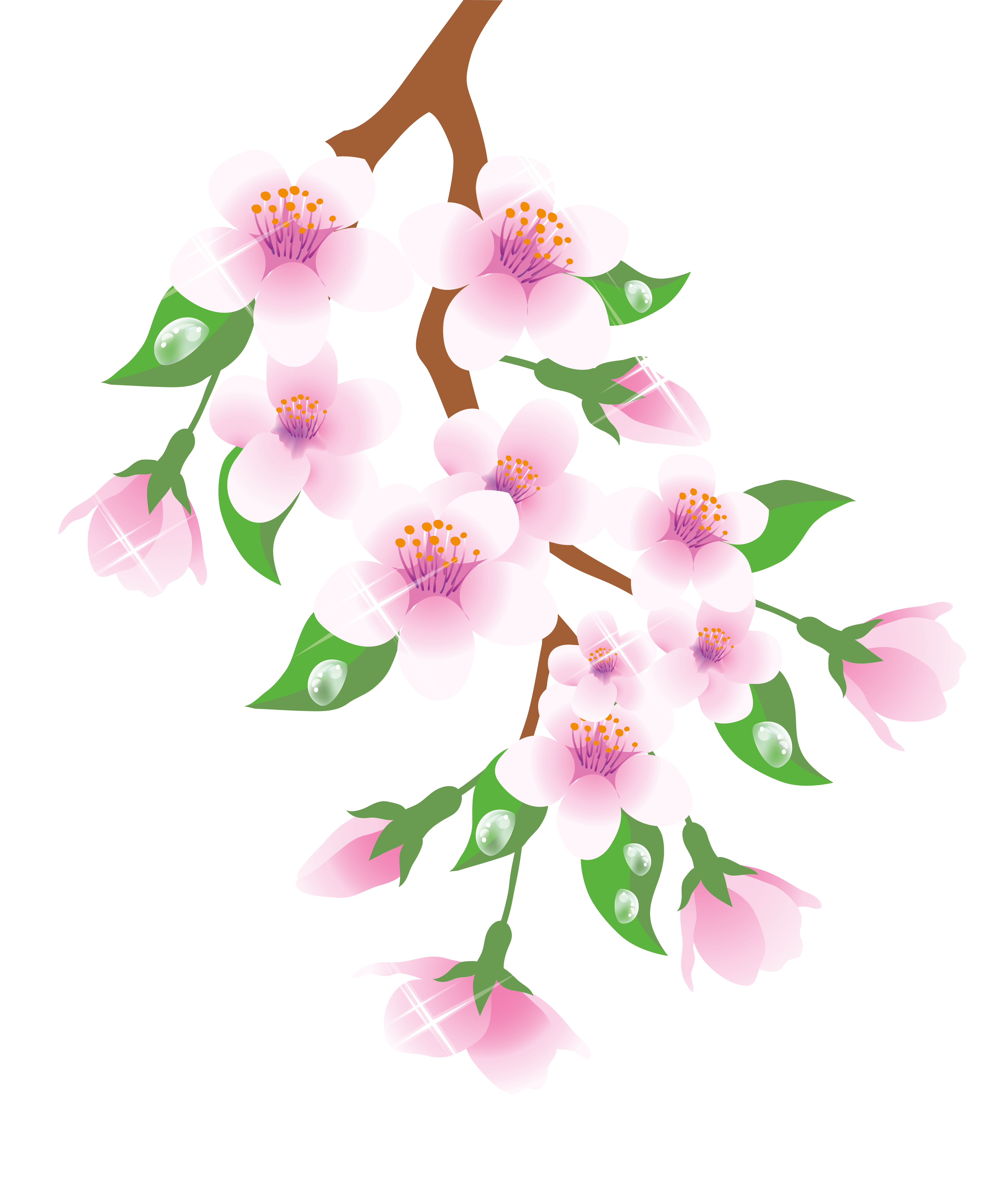 Spring branch clipart jpg library library Spring Branch Pink PNG Clipart | Gallery Yopriceville ... jpg library library