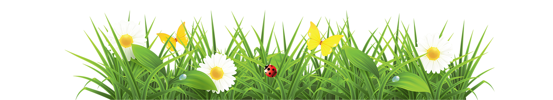 Spring flower banner clipart vector library stock Os meus tratamentos – Nicajoaninha vector library stock