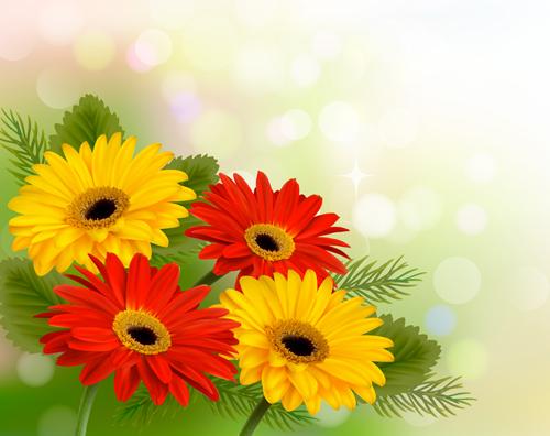 Spring flower pictures download image transparent download Vector set of spring flowers design graphics 04 - Vector Flower ... image transparent download
